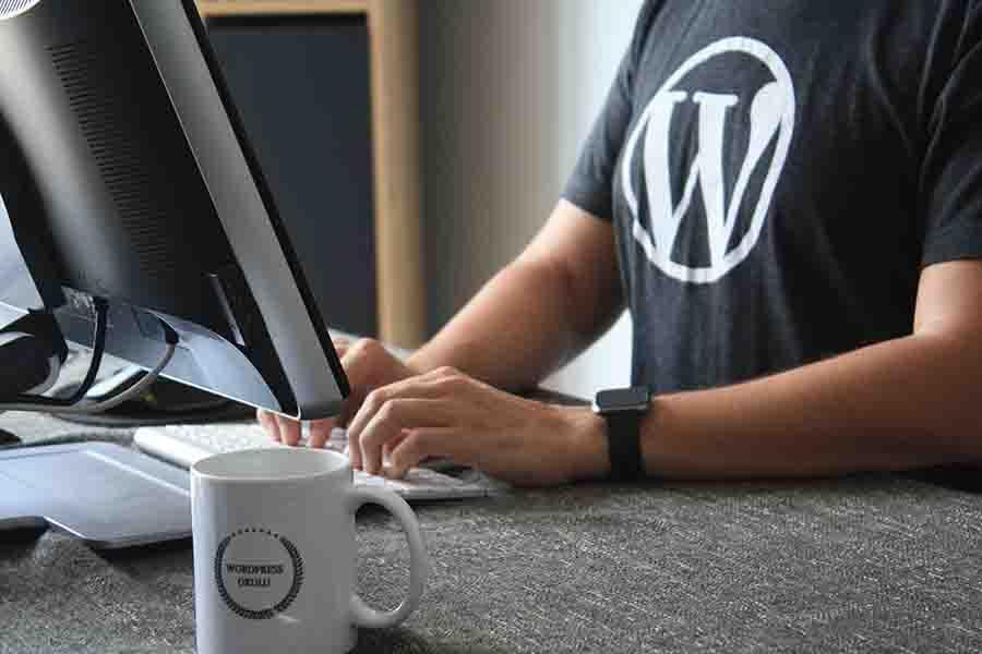 Adding-Favicon-WordPress-Screen-2