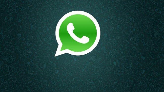 10409247 902866276418113 3672296189599534234 n