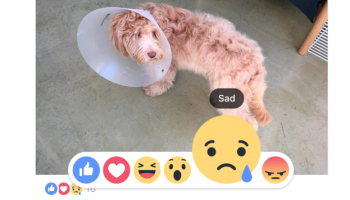 Facebook Enhances Everyone's Like With Love, Haha, Wow, Sad, Angry Buttons