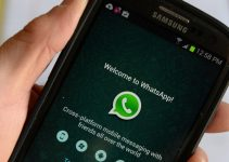 WhatsApp Send Message in different Font in the Android Application
