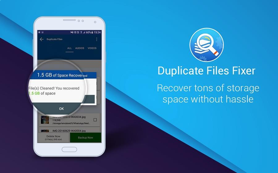 duplicate-file-fixer