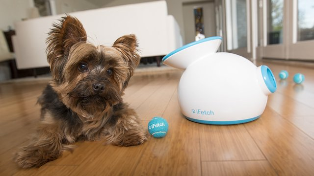 tech-for-pet-ifetch