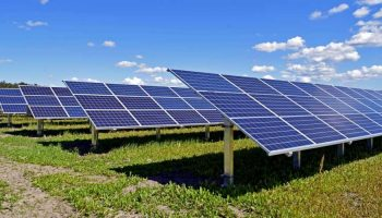 The Importance Of Solar Backsheets In Solar PV Panel