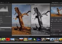 3 Best Online Photo Editing Tools