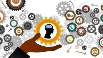 Important Principles of Human Resources