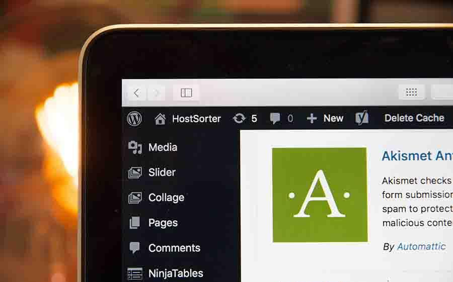 Adding-Favicon-WordPress