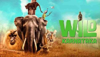 David Attenborough Narrated Wild Karnataka Streaming on Discovery Plus