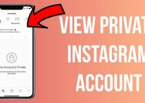 The Best Private Instagram Profile Viewer no Survey Apps