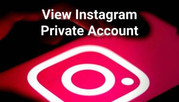 How to View Instagram Private Account Posts?