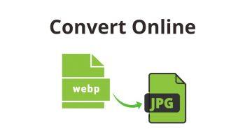 Best Tools to Convert WebP to JPG or PNG Online