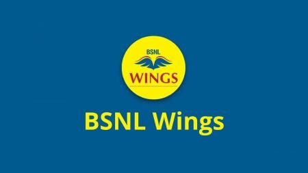 bsnl-wings-logo-wide