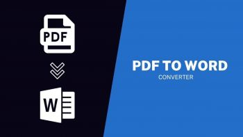 PDF to Words Review – Free Online PDF to Word Converter